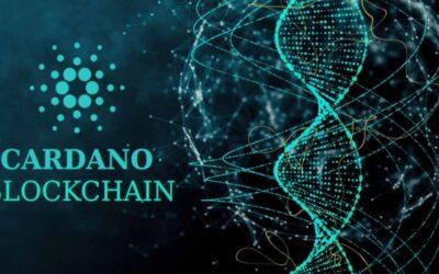 Cardano (ADA) ya supera el 10% en nuestro Accurate Smart Crypto Portfolio. Sentimiento CRIPTOMONEDAS –16 de agosto de 2021-